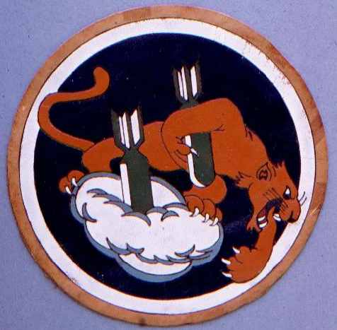 489th Insignia